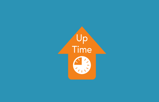 web hosting uptime