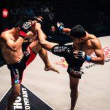 Muay Thai and Social Media Marketing
